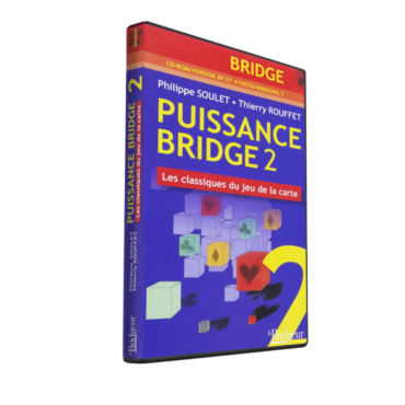Power Bridge 2