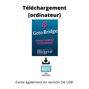 copy of GOTO Bridge -...