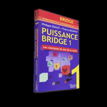 Bridge Power 1