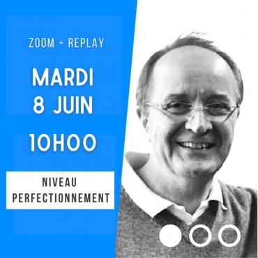 Zoom + Replay : Savoir établir un plan de jeu - Marc Kerlero CONF134 La boutique