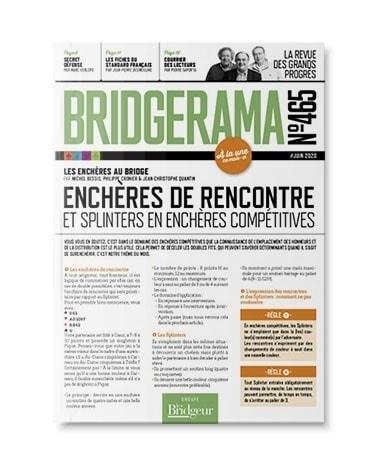 Découvrir BRIDGERAMA